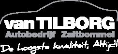 Van Tilborg Logo
